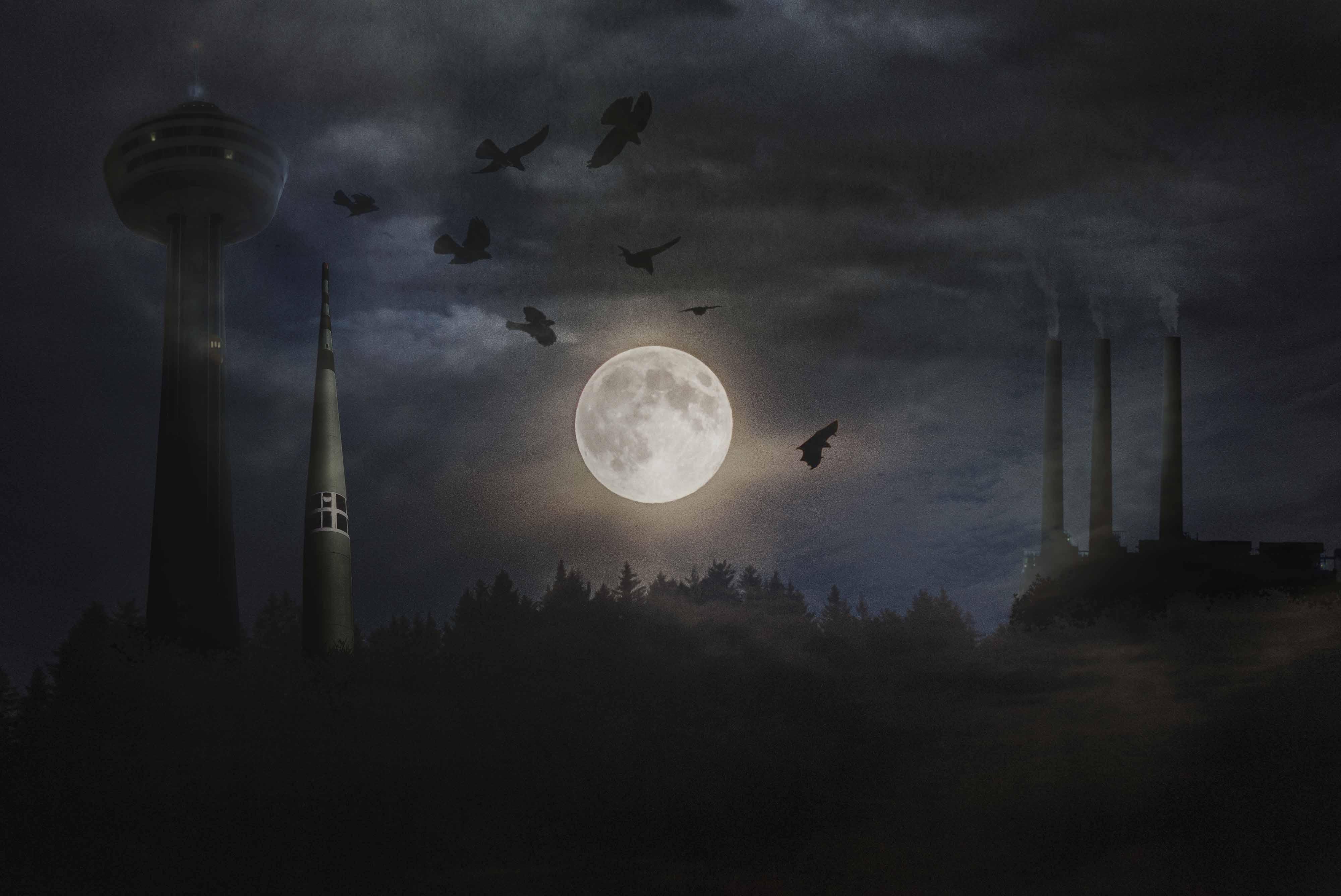 hunted vampire
